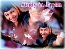 Phương pháp săn học bổng du học Nhật Bản